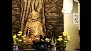 Thiền sư Việt Nam (19/36)