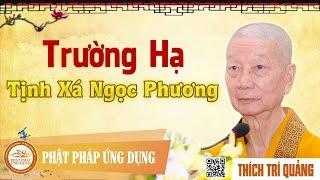 Trường hạ Tịnh xá Ngọc Phương - HT. Thích Trí Quảng