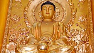 Niệm Phật 4 Chữ - A Di Đà Phật (Giọng Nam, Niệm Nhanh)