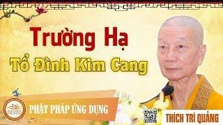 Trường hạ Tổ đình Kim Cang - HT. Thích Trí Quảng