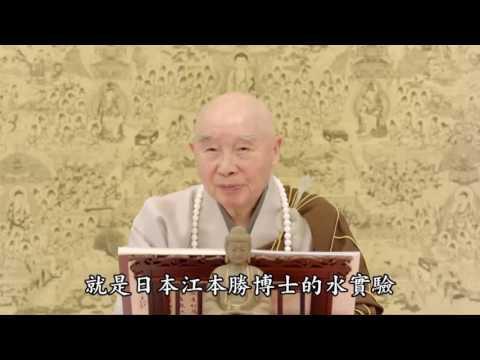 Kinh Vô Lượng Thọ - Phẩm Thứ 6 (Tập 4, Giảng Tại Nhật Bản)