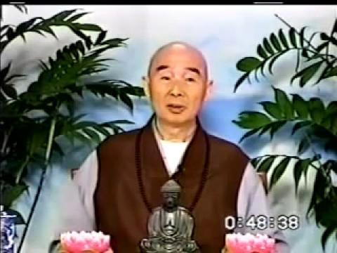 Kinh Vô Lượng Thọ (37-37) Pháp Sư Tịnh Không