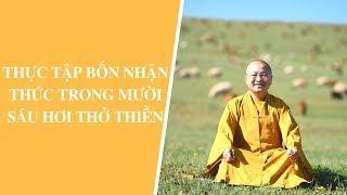Thực tập bốn nhận thức trong mười sáu hơi thở Thiền | Thích Nhật Từ