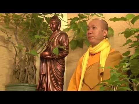 Trí tuệ Thiền Tuệ 2 - Từ Đâu có ra Tâm và Sắc B