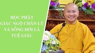 Học Phật giác ngộ chân lý và sống đời là Tuệ giác | Thích Nhật Từ