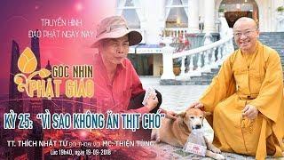 Góc Nhìn Phật Giáo Kỳ 25: Vì Sao Không Ăn Thịt Chó, Chó Là Bạn Chứ Không Phải Thức Ăn