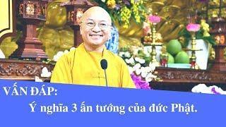 Vấn đáp: Ý nghĩa 3 ấn tướng của đức Phật | Thích Nhật Từ