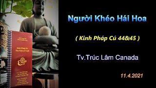 Người Khéo Hái Hoa - Thầy Thích Pháp Hòa (Tv.Trúc Lâm.Ngày11.4.2021)