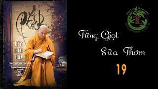 Từng Giọt Sữa Thơm 19 - Thầy Thích Pháp Hòa ( Tv Trúc Lâm, Ngày 8.5.2020 )