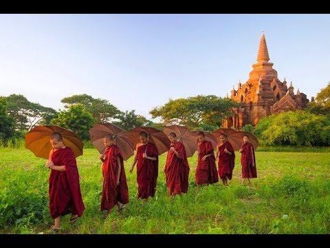 Phật Giáo qua dòng chảy lịch sử
