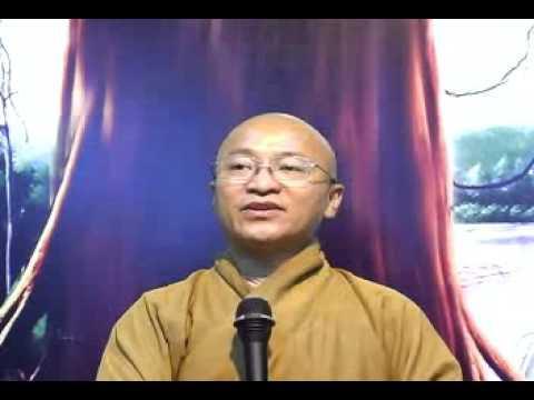 Kinh Trung Bộ 149-150: Tu sĩ đáng tôn kính (02/01/2010) video do Thích Nhật Từ giảng