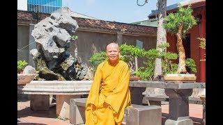 Ý nghĩa Phật đản 2018