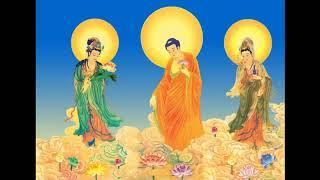 Kinh Hoa Nghiêm (56-107) Tịnh Liên Nghiêm Xuân Hồng - giảng giải