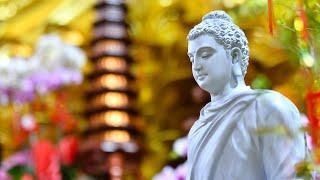 BÀI 2-  MÔN HỌC  SO SÁNH TRIẾT HỌC PHẬT GIÁO, TT. Thích Nhật Từ giảng dạy ngày 20/9/2021