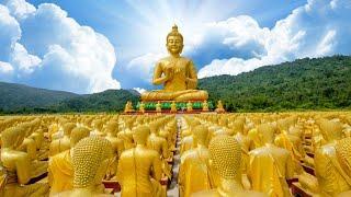 TT. Thích Nhật Từ trả lời vấn đáp Phật pháp online - Ngày 30- 03-2020