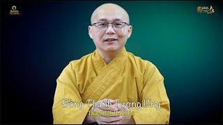 5 PPP Số 495 | Đồng Thanh Tương Ứng