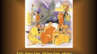 KINH PHÁP CÚ 21 - PhẩmTẠP LỤC - Nhạc Võ Tá Hân - Thơ Tuệ Kiên