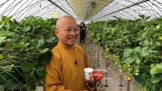 Thầy Nhật Từ cùng quỹ ĐPNN hành hương Hàn quốc 04-2018- Phần 3