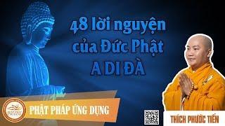 48 Lời Nguyện Của Đức Phật A DI ĐÀ 01 - ĐĐ. Thích Phước Tiến