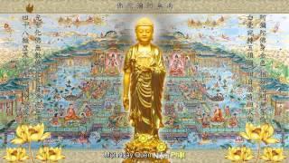 Nhạc Niệm Phật, Phóng Sanh (Có Phụ Đề, Hình Động) (Rất Hay)