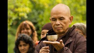 Bài 33 Tổ Sư Thảo Đường và các Tổ Sư truyền vào Việt Nam