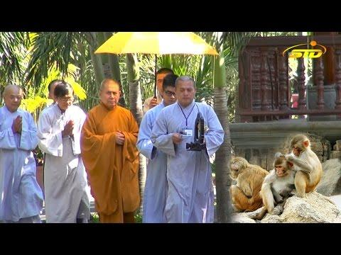 Phật Pháp Nan Văn