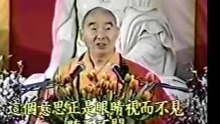 Kinh Vô Lượng Thọ (14-37) Pháp Sư Tịnh Không