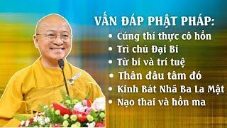 Vấn đáp Phật pháp: Cúng thí thực, Trì chú Đại Bi, Từ bi và trí tuệ, Kinh Bát-nhã, Nạo thai,...