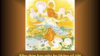 KINH PHÁP CÚ - 07 Phẩm A LA HÁN - Nhạc Võ Tá Hân - Thơ Tuệ Kiên