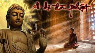 Nam mô A Di Đà Phật 11