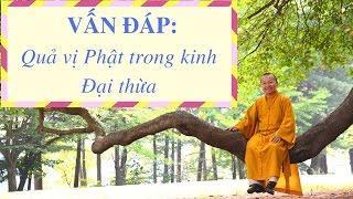 Vấn đáp: Quả vị Phật trong kinh Đại thừa