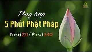 """Tổng Hợp """"5 Phút Phật Pháp"""" từ số 221 đến 240"""