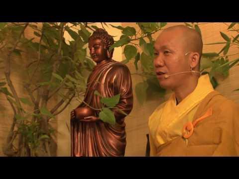 Trí Tuệ Thiền Tuệ 1 - Vén Màn Vô Minh