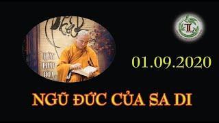 Từng Giọt Sữa Thơm 61 - Thầy Thích Pháp Hòa (Tv Trúc Lâm, Ngày 1.9.2020)