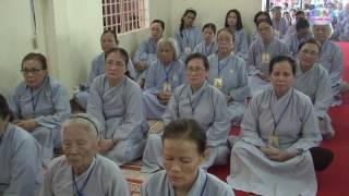 Ta Phải Làm Gì Trong Ngày Phật Đản