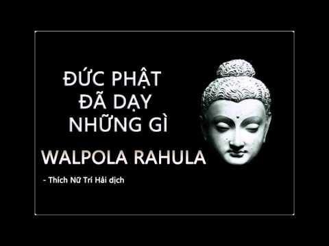 Đức Phật đã dạy những gì