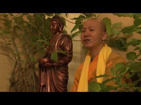 Trí tuệ Thiền Tuệ 2 - Từ Đâu có ra Tâm và Sắc A