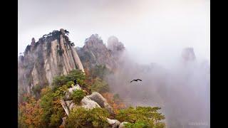Đức Tính Thi Ân - Tri Ân - Đền Ân | HT. Viên Minh | Tịnh Xá Định Quang - Lâm Đồng | Ngày 15/11/2020