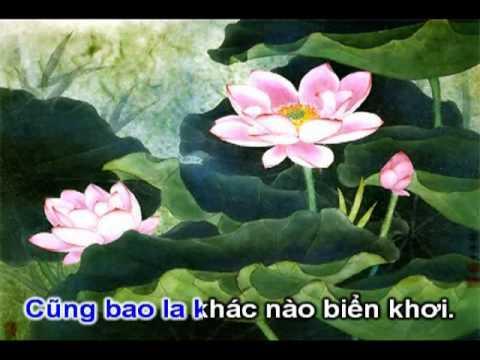 Suối Nguồn Từ Bi (Rất Hay) - Karaoke (Nhạc Phật Giáo chuyển lời)