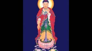 Đọc Kinh Đại Thừa Vô Lượng Thọ (HT. Thích Đức Niệm dịch) (Phụ Đề Việt Ngữ) (Rất Hay)