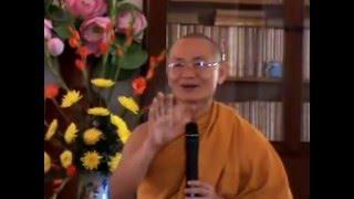 Điều chỉnh nhận thức - HT Viên Minh giảng (2011)
