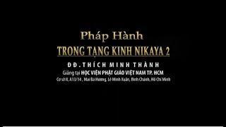 Kinh NIKAYA Giảng Giải - Pháp Hành Trong Tạng Kinh NIKAYA 2 - ĐĐ Thích Minh Thành