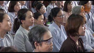 STT44 || Vấn đáp Phật pháp - Thầy Trí Chơn thuyết giảng