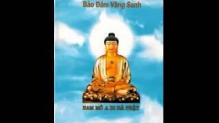 Niệm Phật Đạt Bất Niệm Tự Niệm Bảo Đảm Vãng Sanh (Trọn Bài, 1 Phần)