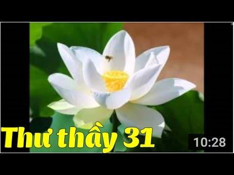 Tuyển Tập Thư Thầy - Thư số 31 - Hạnh phúc tối thượng