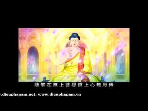 Sự Tích Phật Thích Ca Mâu Ni (Theo Kinh Bi Hoa) (Tập 22)