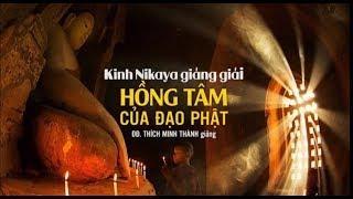 Kinh NIKAYA Giảng Giải -  Hồng Tâm Của Đạo Phật
