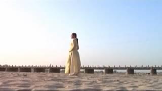 Phim tài liệu: Theo dấu chân Phật