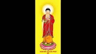(1-5) Chuyện Niệm Phật Cảm Ứng - Lâm Kháng Trị