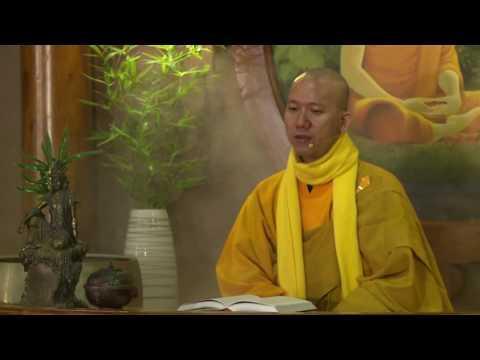 Trí Tuệ Thiền Tuệ 3 - 10 Trạng Thái Về Vô Thường